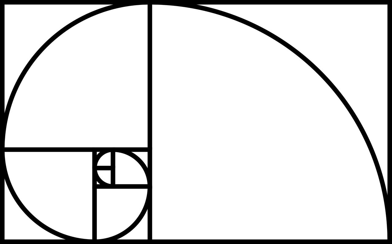 golden ratio nautilus golden spiral